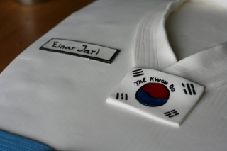Tae Kwon Do cake by TheCakeDiary.com